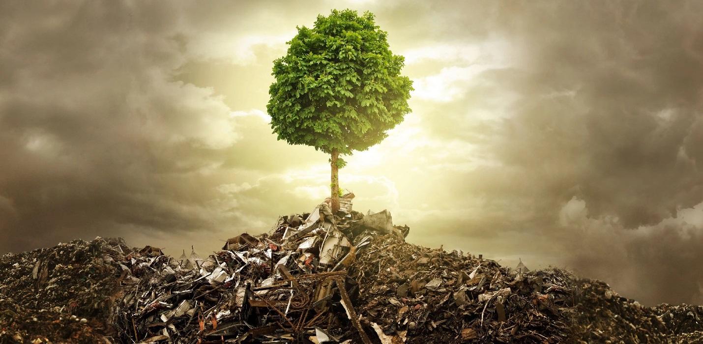 consulenza ambientale milano (3)